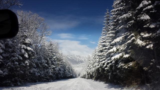 zima-bardejov